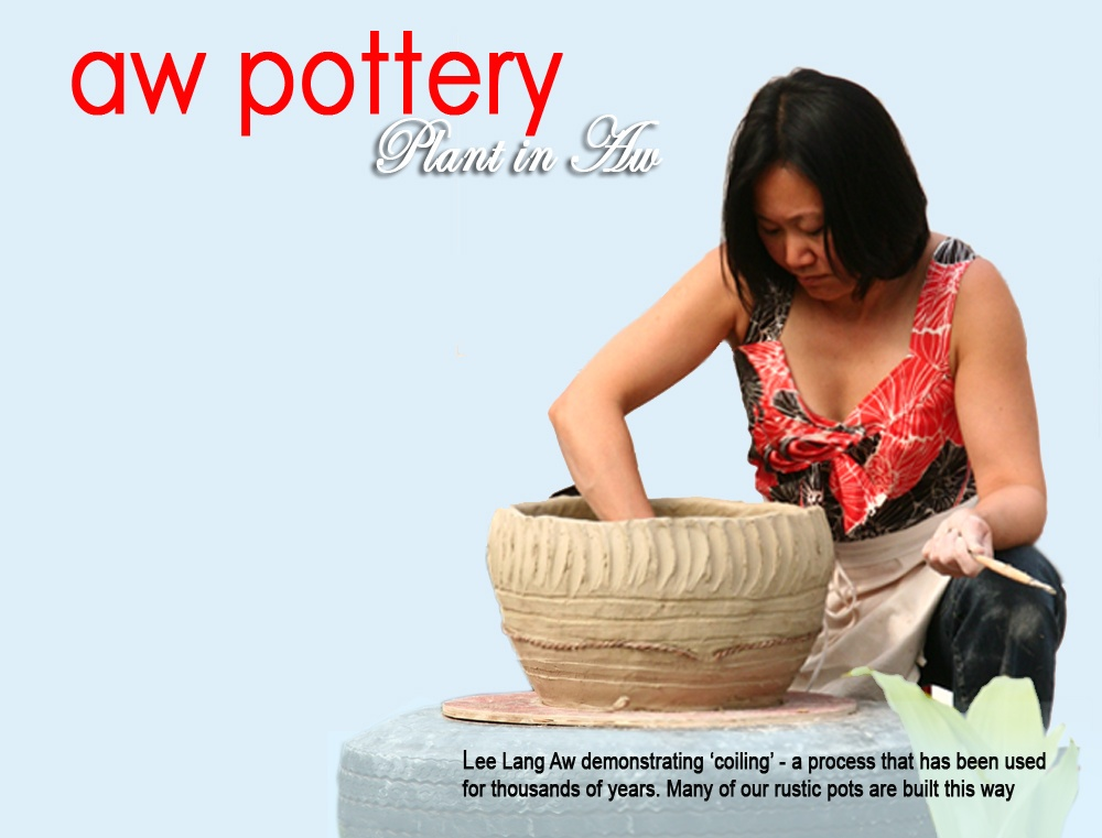 Lee Lang Making Pot